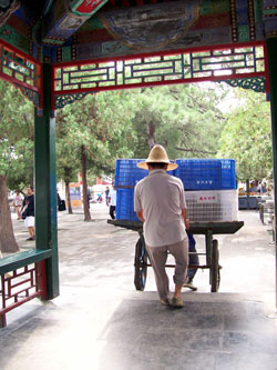 Worker At The Summer Palace