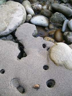 Crabs, Rocks And Sand