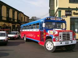 Local Chicken Buses