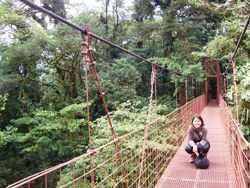 On A Swinging Bridge