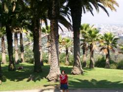 Palm Trees Make Me Look Small!
