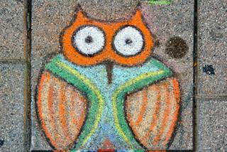 Puzzled Owl, Ottawa