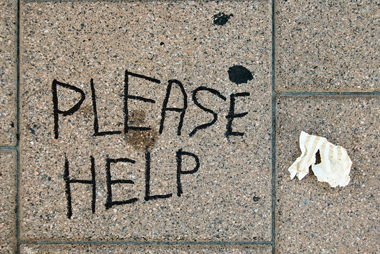 Please Help, Ottawa, 2012