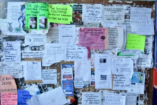 Job Board in Tulum