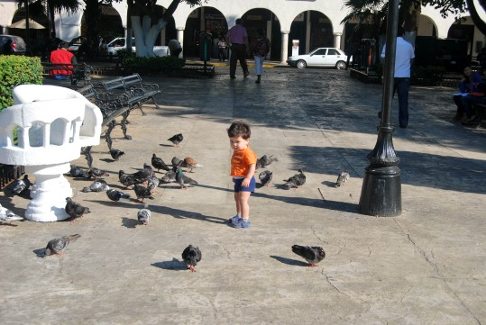 Mark Chasing Pigeons in Merida