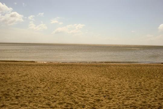 Chaco Verde