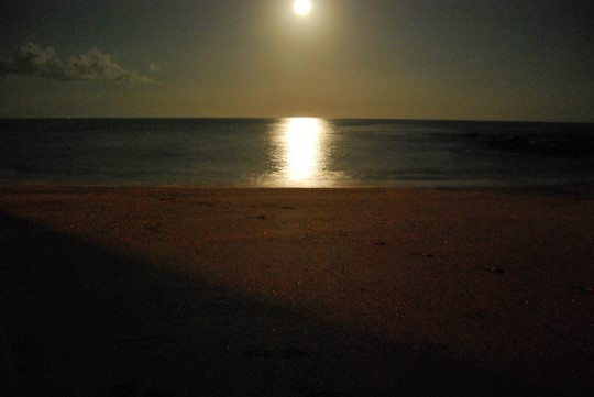 Moonlight in Montezuma