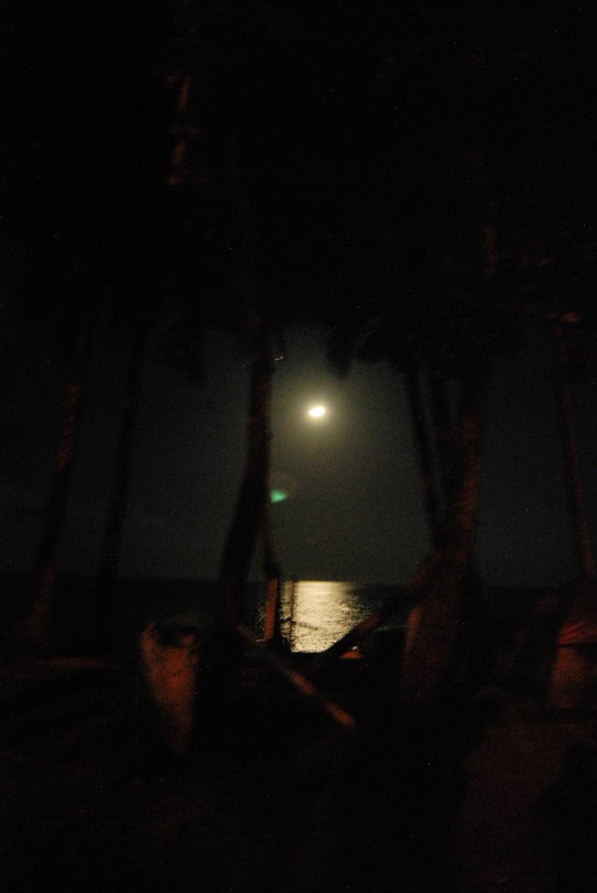 Moonlight in Montezuma