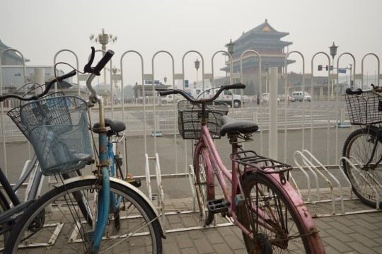 Bicycles in Qianmen