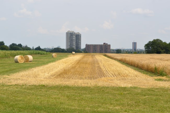 The Experimental Farm in Ottawa