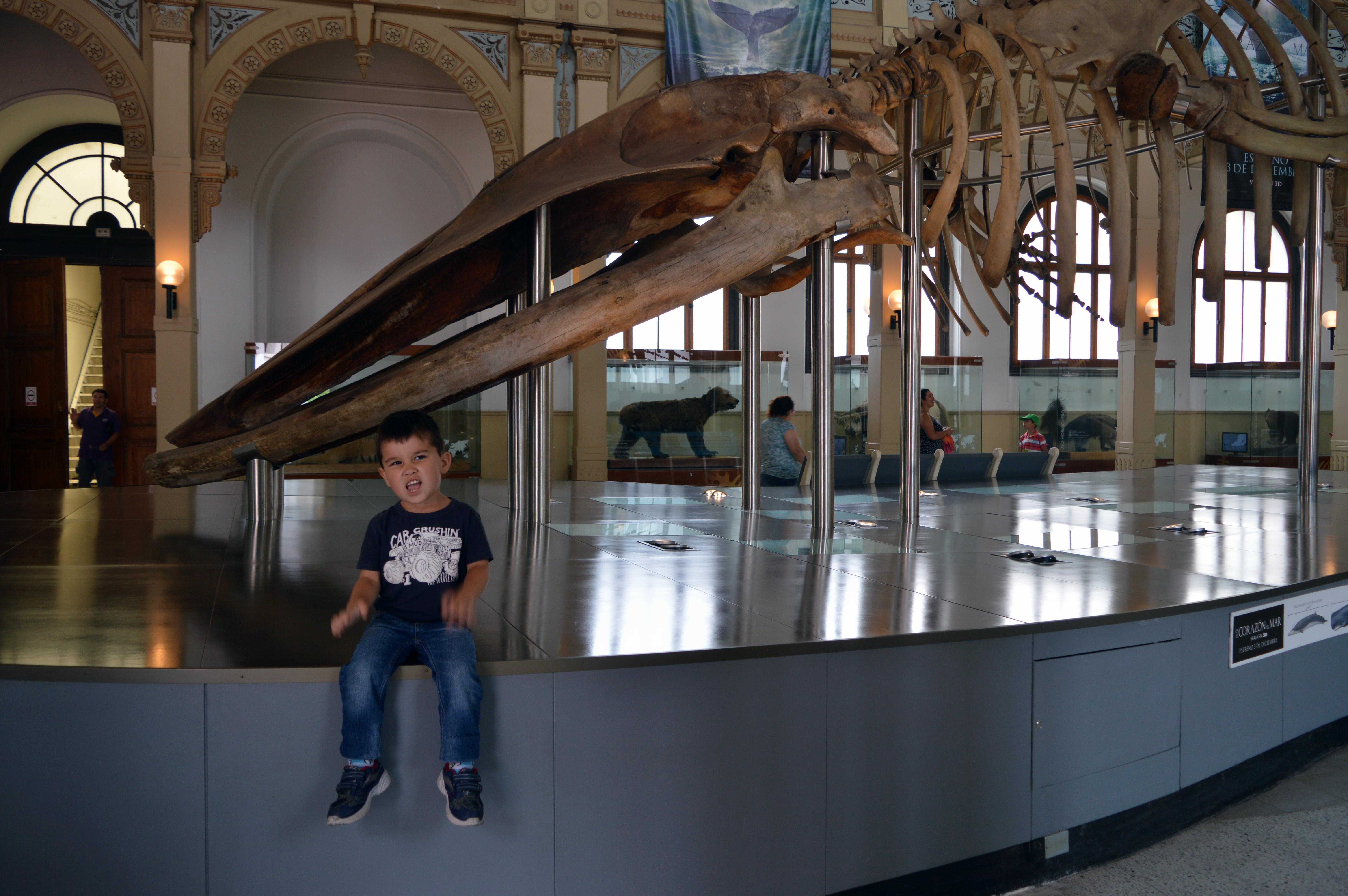 Museo Nacional de Historia Natural