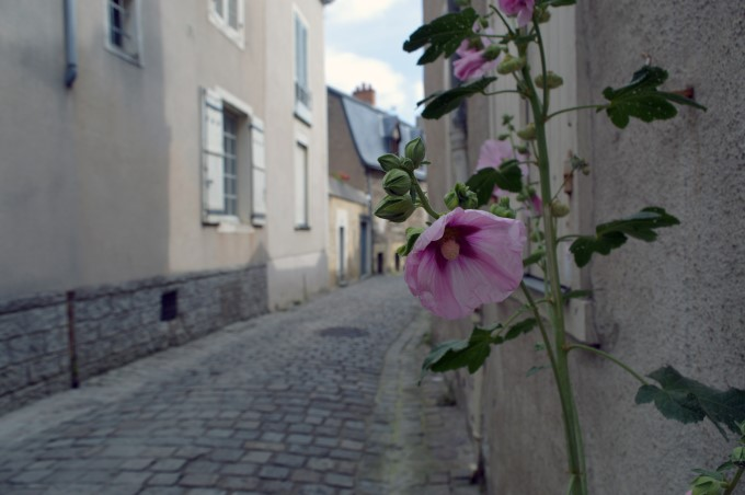 The old part of town in Angers