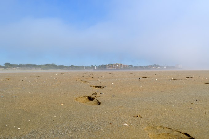The beach after the mist