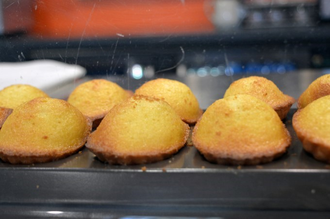 Madeleine, fresh out of the oven