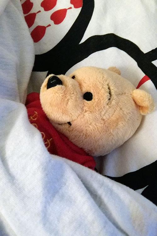 Winnie is always ready to go to sleep