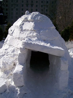 Igloo Downtown Ottawa