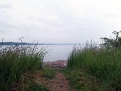 The Shores
