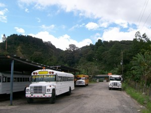 Chicken Buses Parking