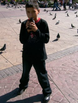 Playing With Feral Pigeons, San Jose - Costa Rica