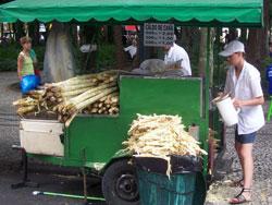 Selling Sugar Cane, Curitiba, Brazil