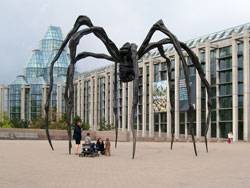 The Big Spider