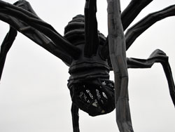 """Maman"", The Big Spider"
