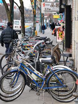Bikes On Spadina