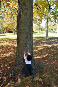 Mark Chasing Squirrels