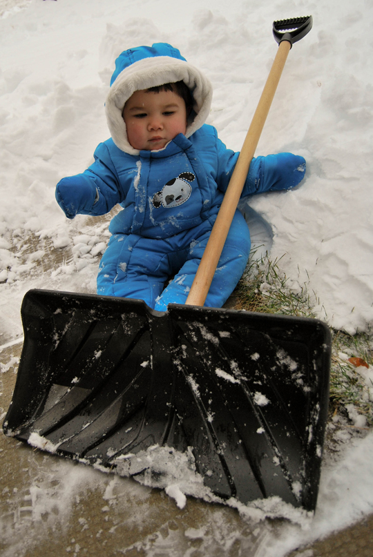 Now... Shovel, Please!