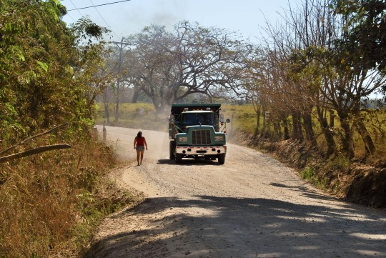 Dirt Road From Cóbano