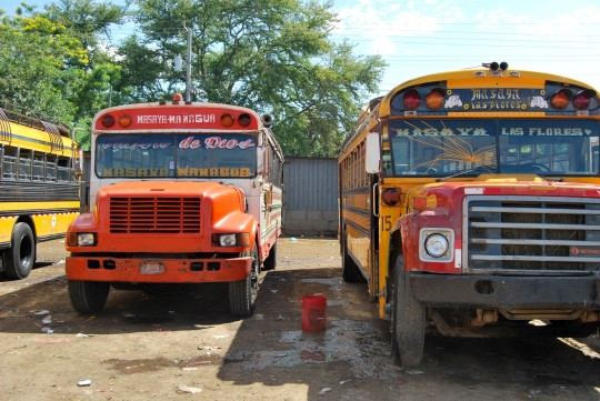 Chicken Buses in Masaya