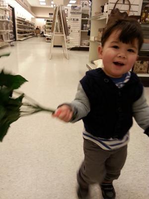 Thanks for the Fake Flowers, Mark! (Ottawa, April 2014)