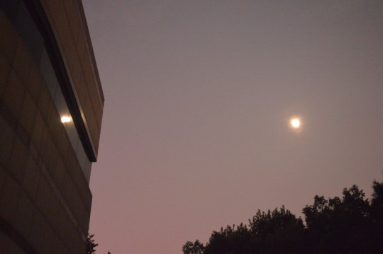Moon Over Wuhan