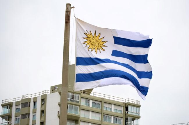 Uruguyan Flag