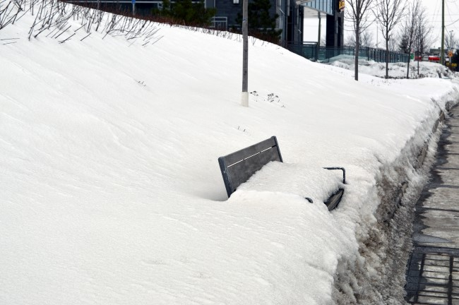 Benches by the Bus Stop