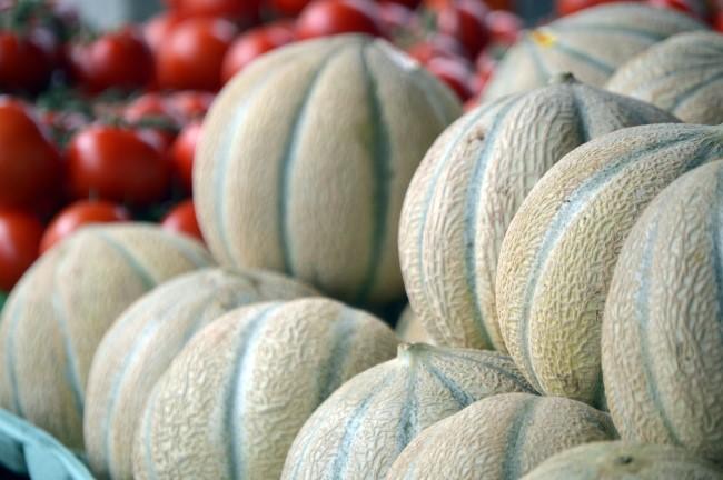 Cantaloupes and Tomatoes
