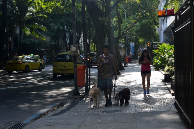 Dog walker in Ipanema