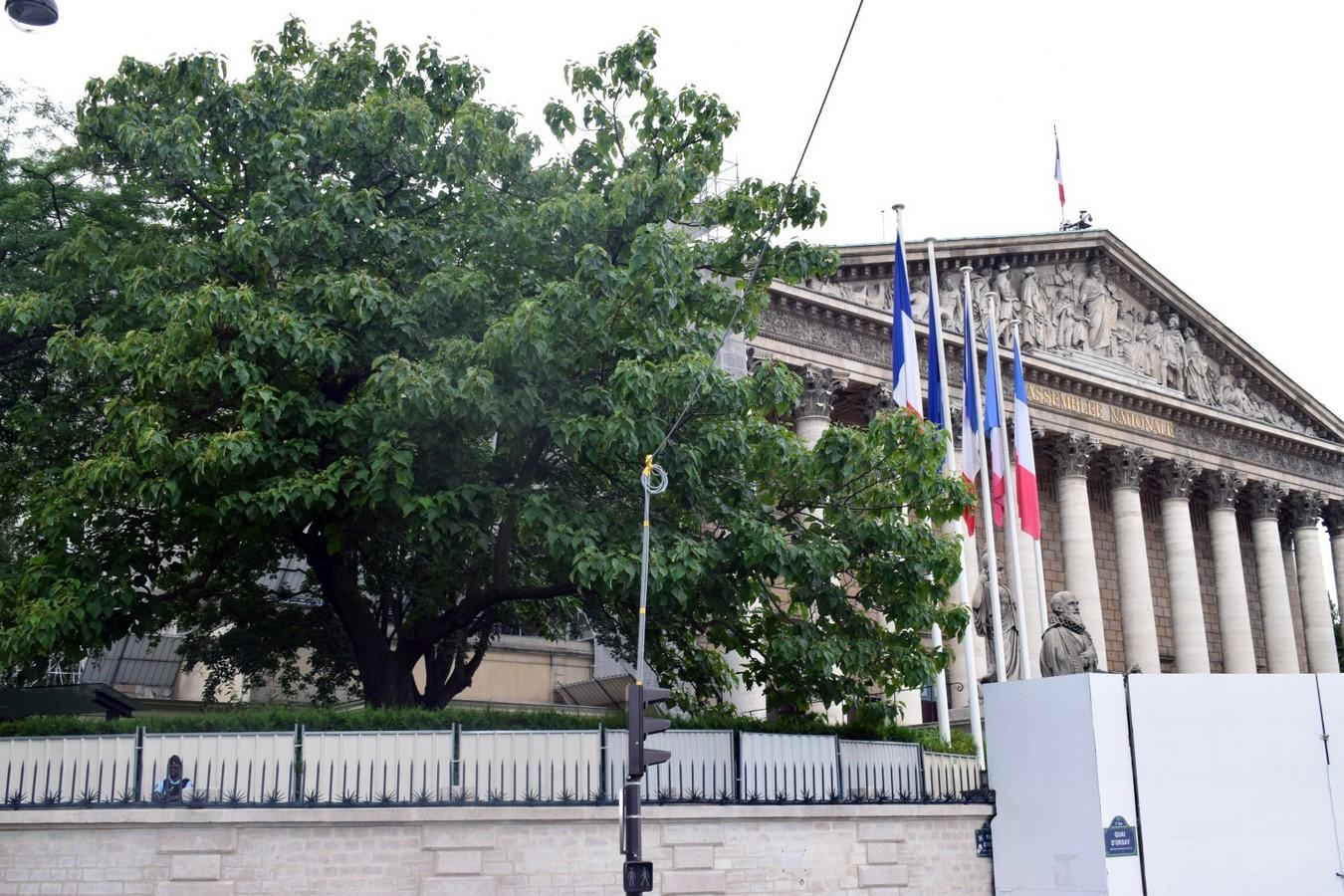 Assemblée nationale, Rue de l'Université, Paris