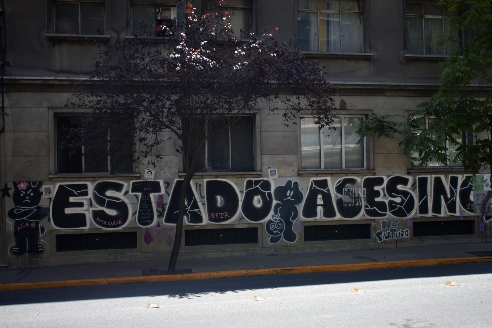 "Santa Lucía, Santiago, ""The state kills"""