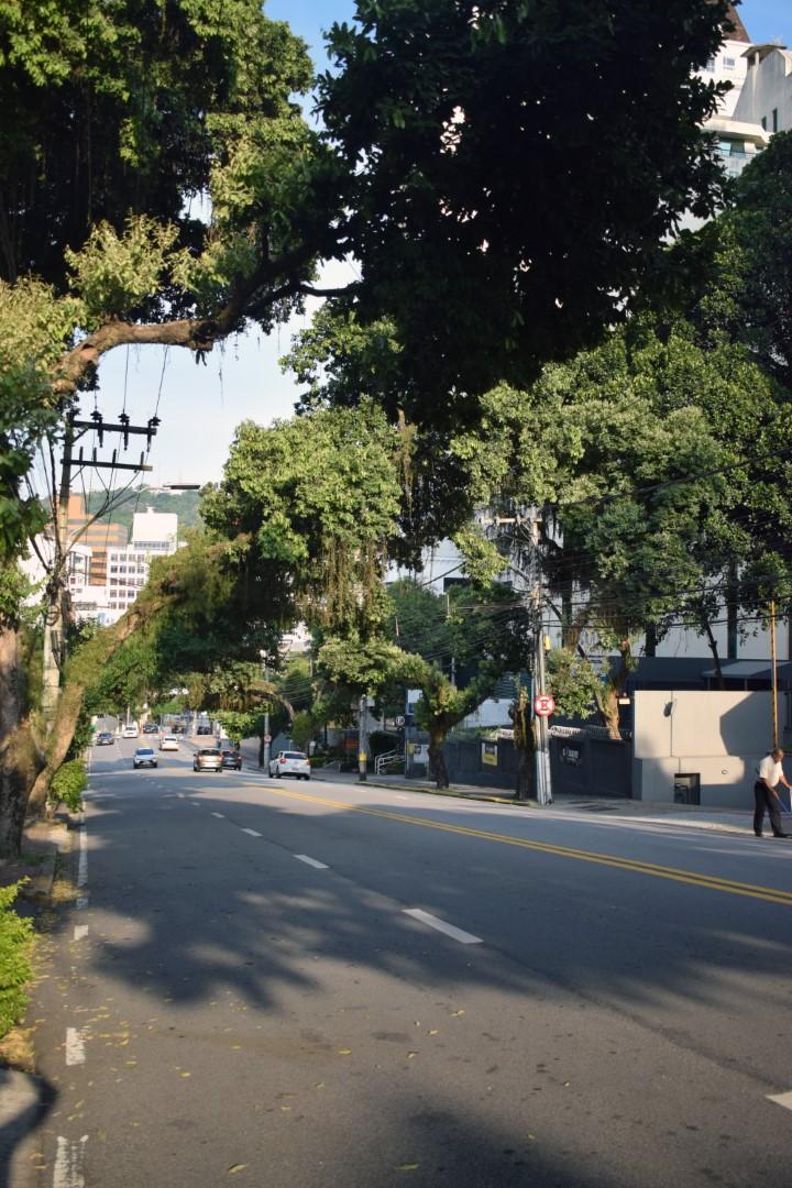 Avenida Rio Branco, Centro, Florianópolis