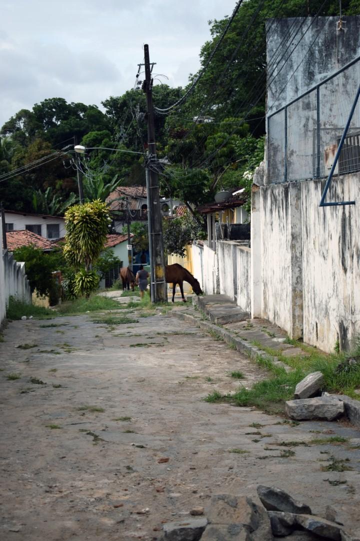 R. Quinze de Novembro, Olinda