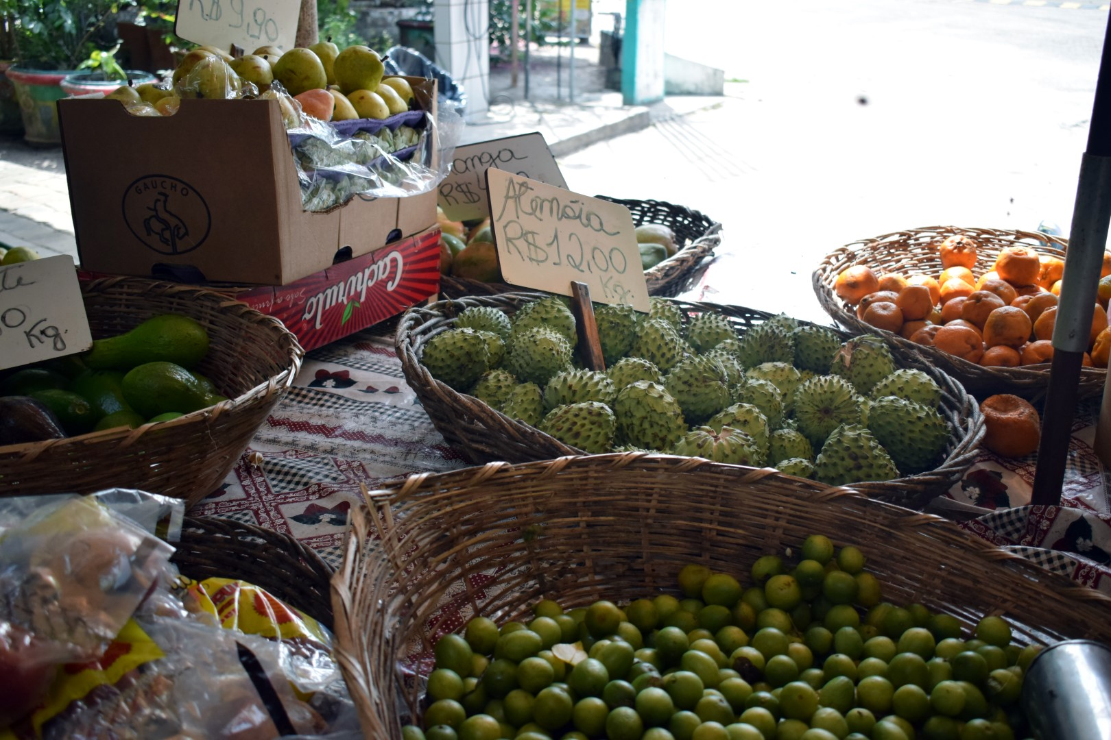 "Exotic fruits (aka ""regular fruits"") at the pit stop between Aracaju and Salvador"