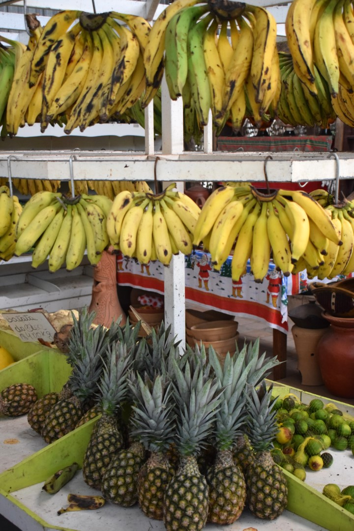 Bananas and pineapples at the pit stop between Aracaju and Salvador