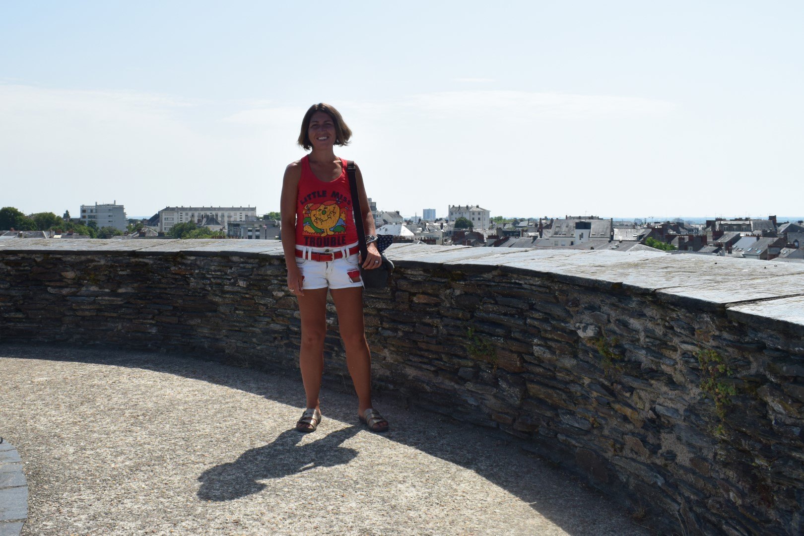 On the castle's ramparts