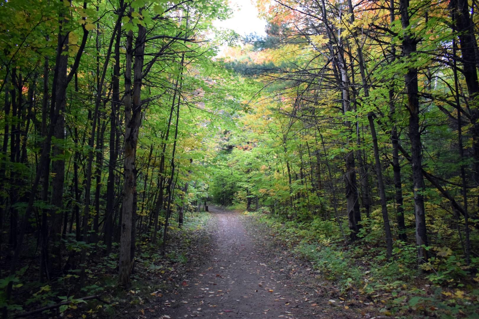 Mackenzie King Estate, Gatineau Park, September 2020