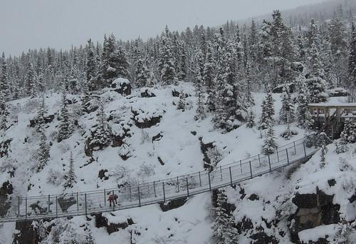 """""""Canada (Yukon, BC) Yukon Suspension Brid"""" (CC BY 2.0) by ustung"""