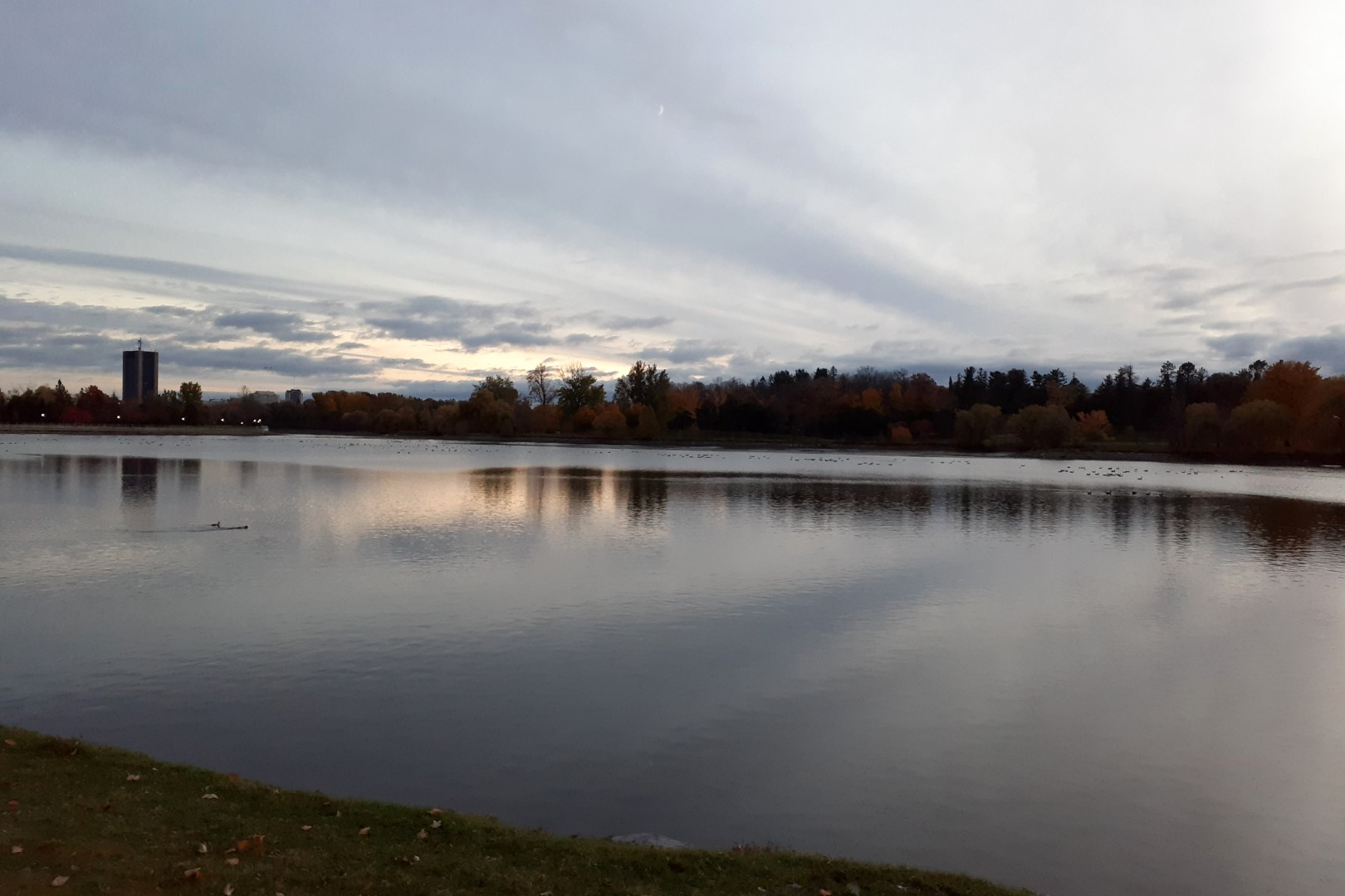 Dow's Lake, Ottawa, October 2020