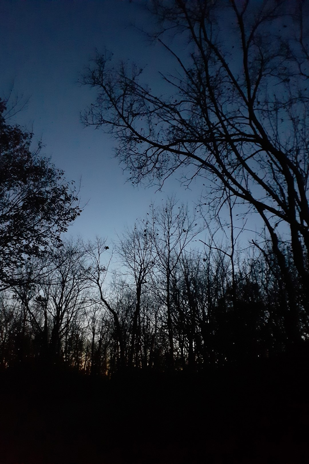 Clear sky, cold night, Ottawa, October 2020